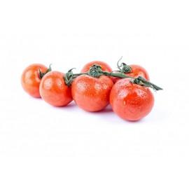 Tomaquet sucar