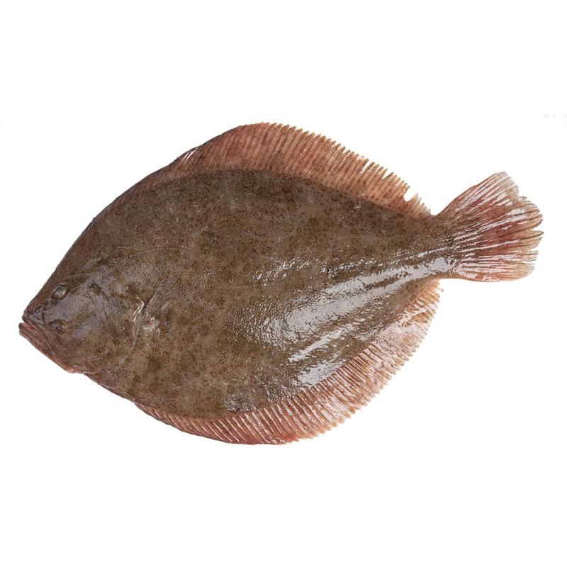 Rèmol de Galícia