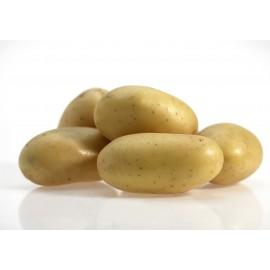 Patata monalisa a granel