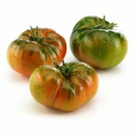 Tomaquet raff
